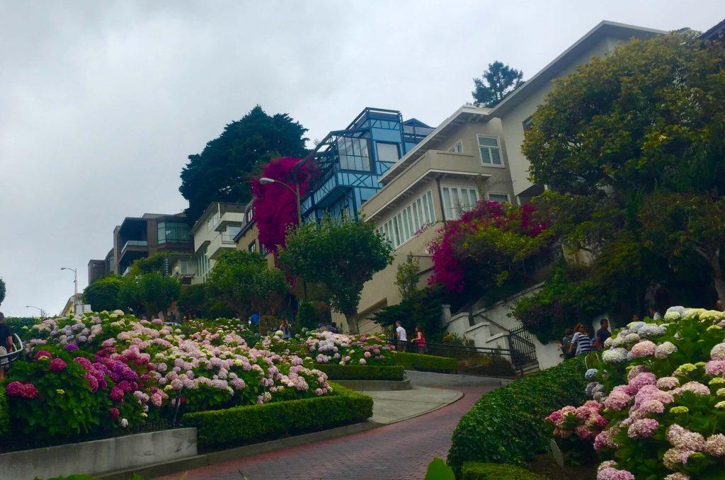 San Francisco, California Surf Road Trip