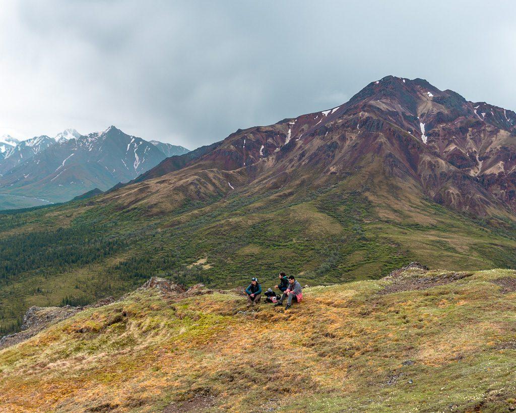 Igloo Mtn, Denali National Park, Hiking and Camping, Alaska