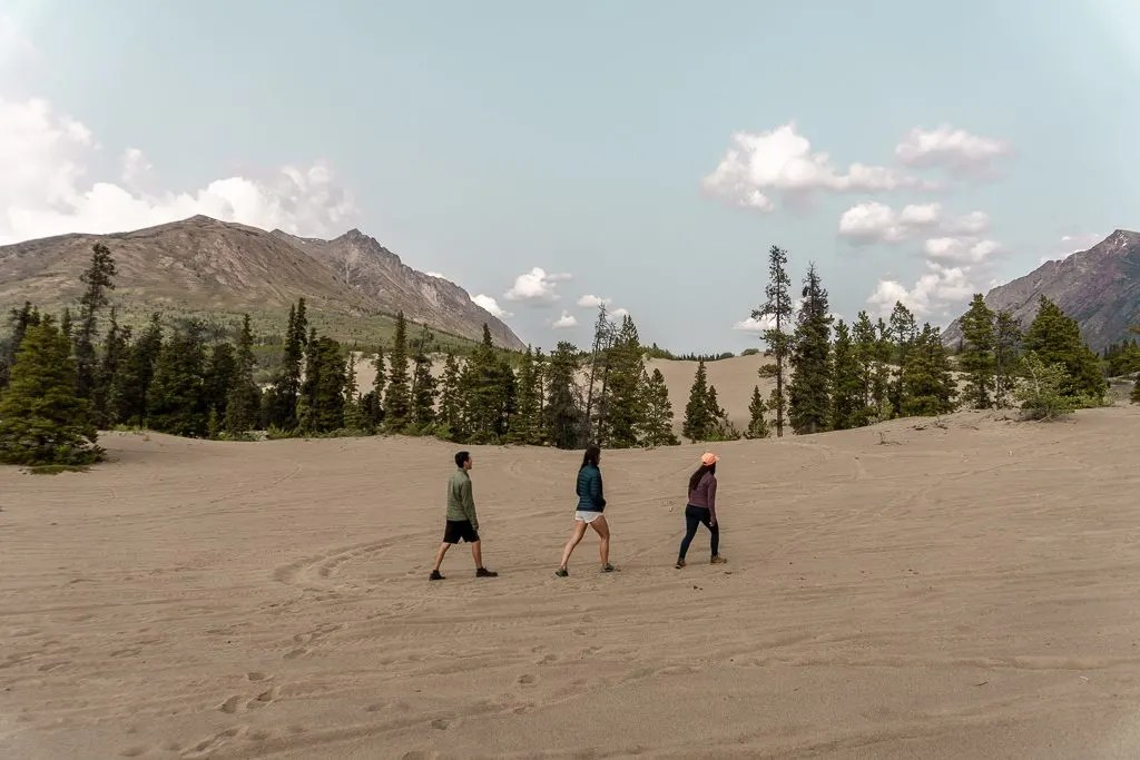 Carcross Desert, Golden Circle, Yukon