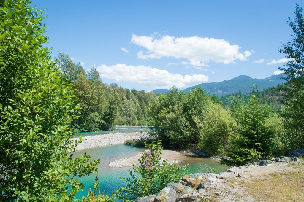 Squamish camping: Mamquam River Campground