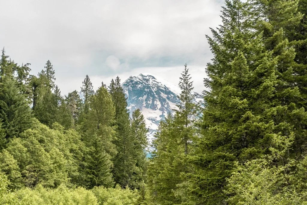 Mount Rainier, Kautz Creek Picnic Area