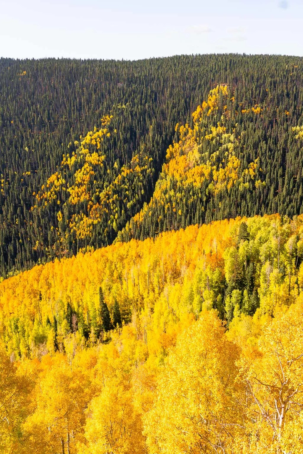 Castle Rock Hike fall colors, Million Dollar Highway scenic drive