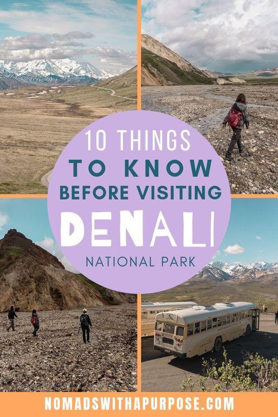 things to know for visiting Denali Pin