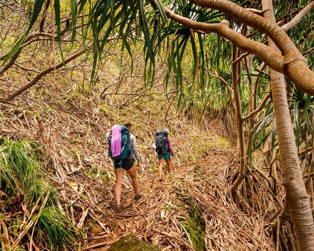 Mile 2-6 on the Kalalau Trail