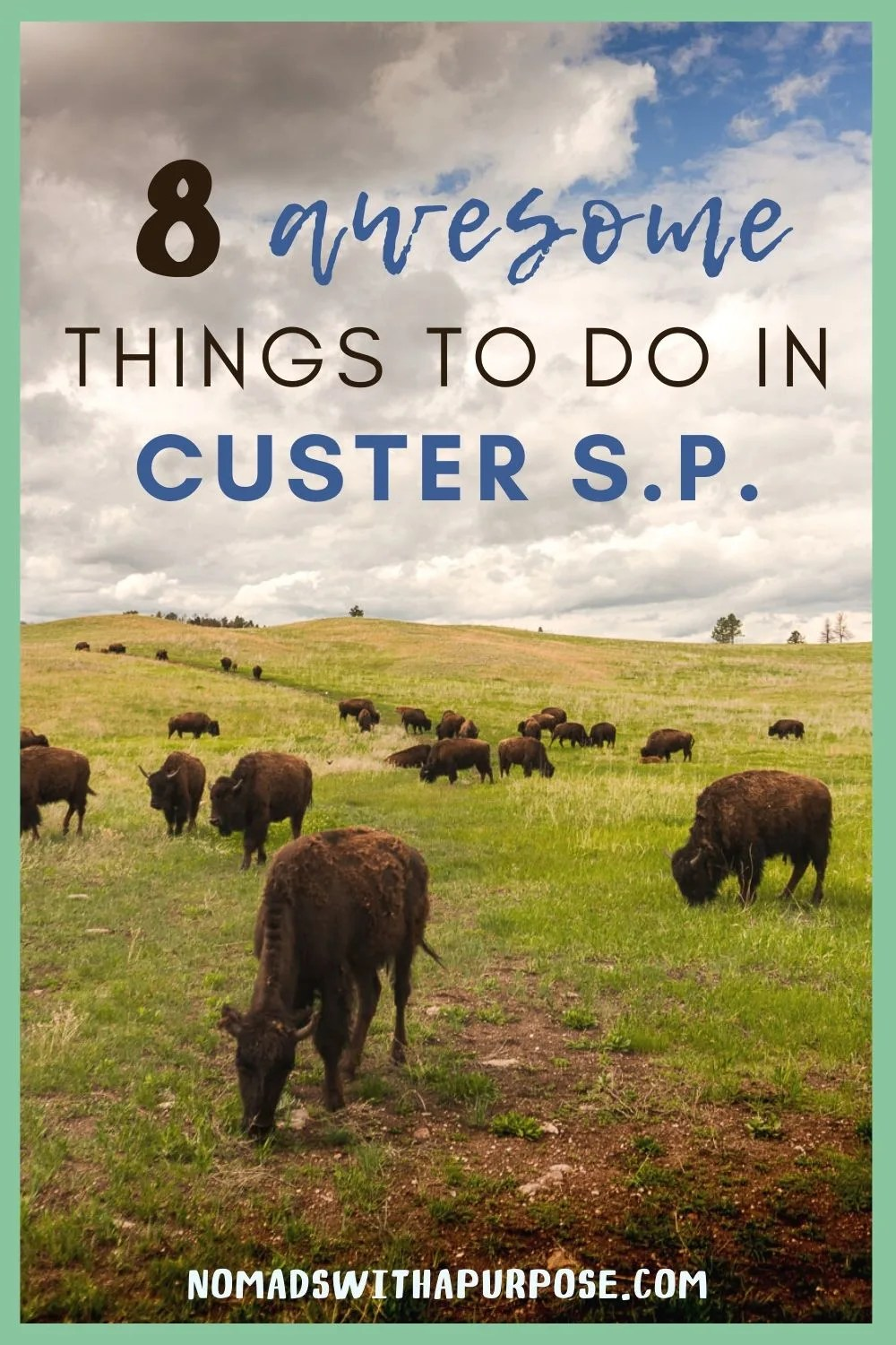 8 Amazing Things to Do Custer State Park