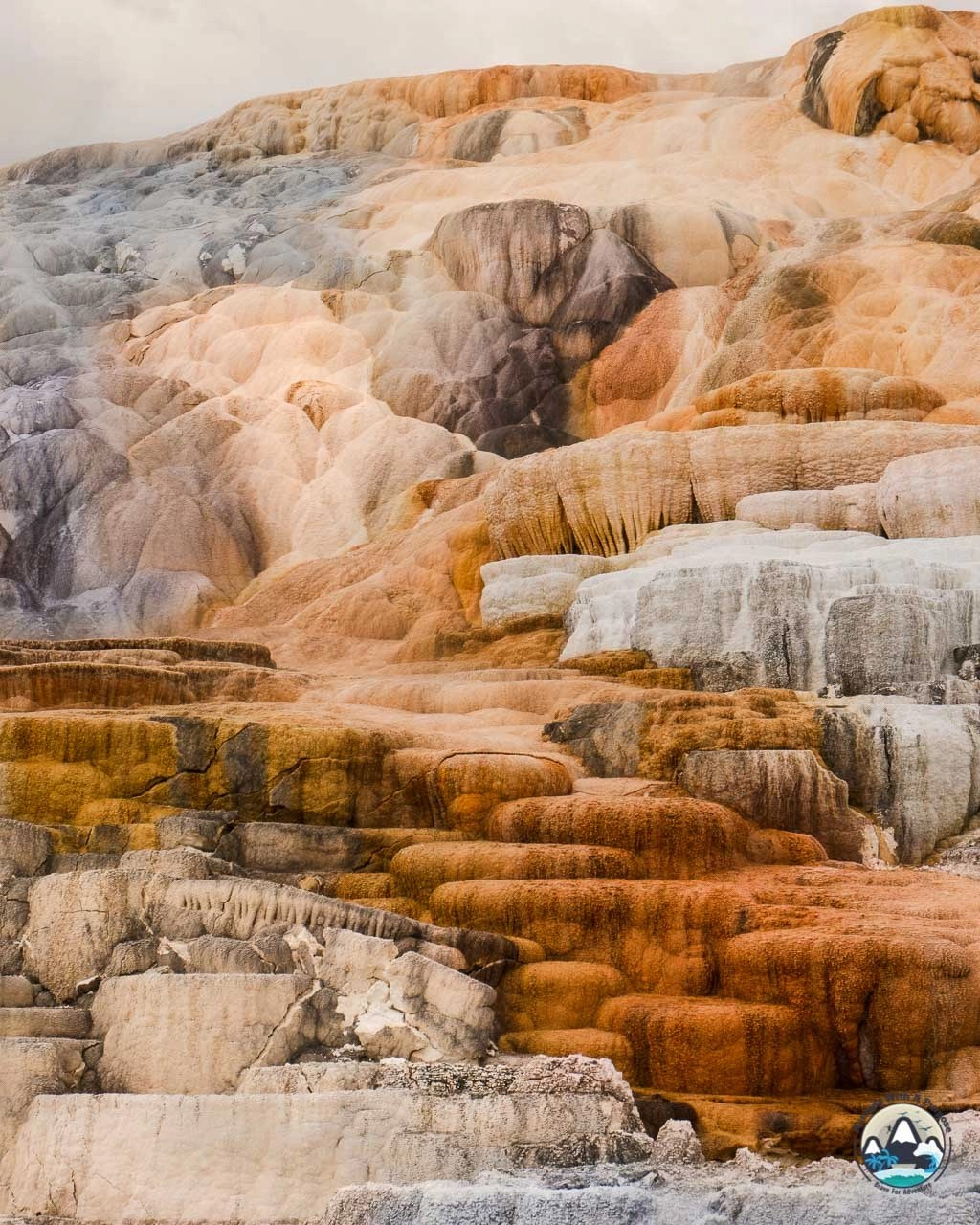 Mammoth hot spring colors, Yellowstone, Wyoming