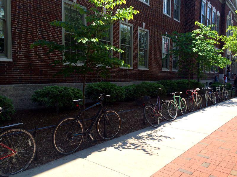 SCAD bikes