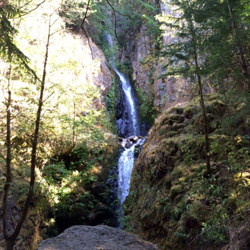 Starvation Creek falls 1