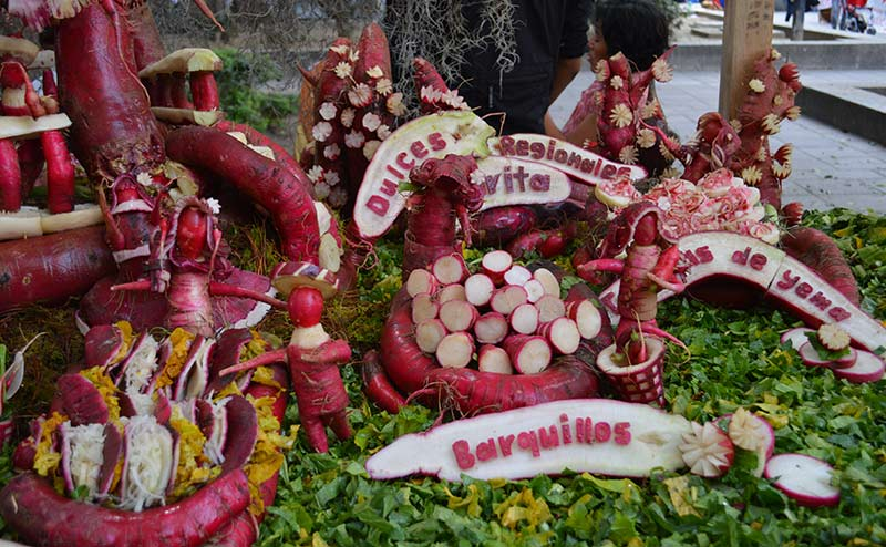 Grand prize winner at Oaxaca's Night of the Radishes, one of the most popular Christmas traditions in Mexico