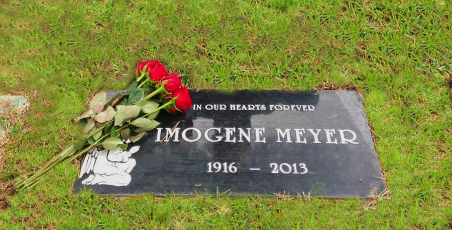 A flat carved grave plaque in a flat lawn in a cemetery in California, with roses.