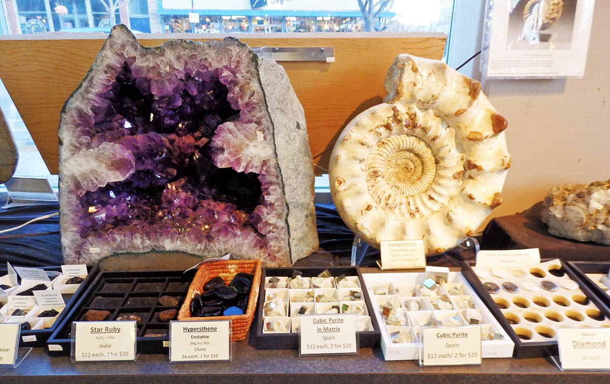 A huge amethyst geode and fossils at Nature's Own in downtown Fort Collins, Colorado
