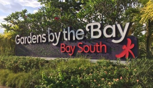 【SFC修行】シンガポール観光その6(Garden By the Bay)