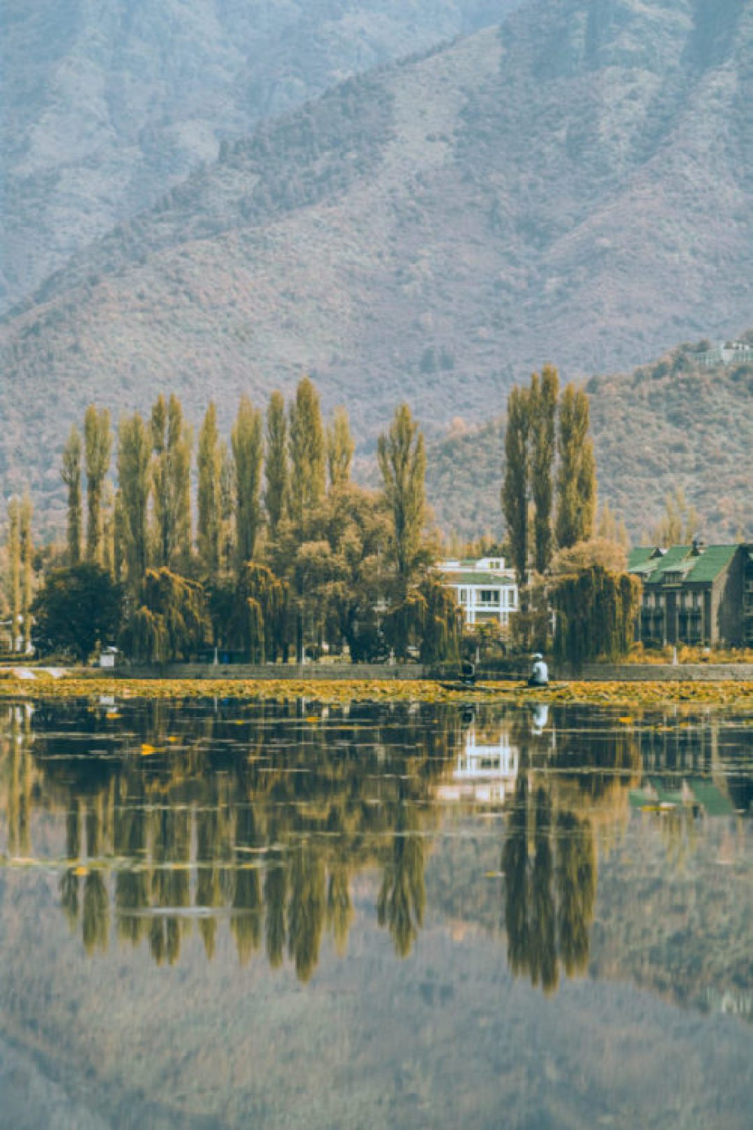 Reflections of Kashmir