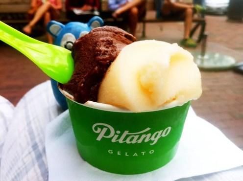 Chocolate Noir from Pitango Gelato