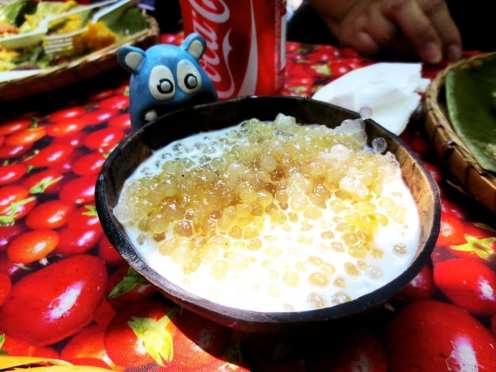 Coconut Milk with Sago from Villa Escudero Philippines