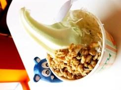 Honeydew Froyo from Iceberry