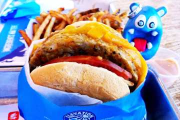 Veggie Burger from Elevation Burger