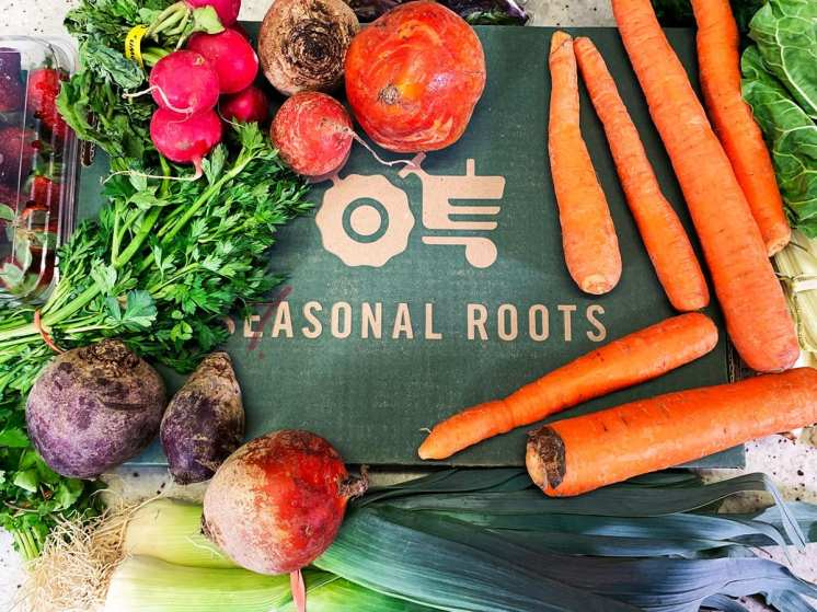 Produce Delivery Subscription Seasonal Roots