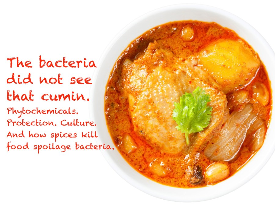 spices like cuimin kill bacteria