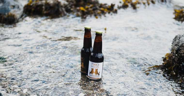 Two Wolves Brewing: Beers for the light and dark within us all