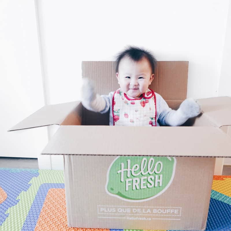 HELLO FRESH MEAL PREP FOOD DELIVERY SERVICE