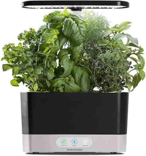 Indoor Herb Growing Kit https://amzn.to/3mGHknu