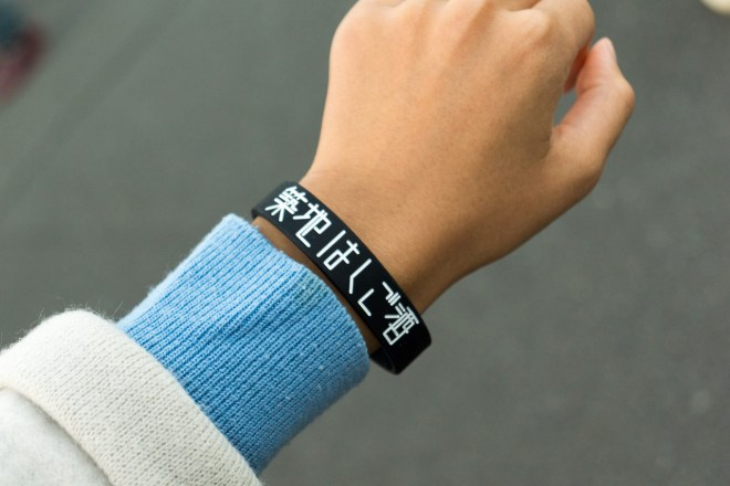 Wristband system