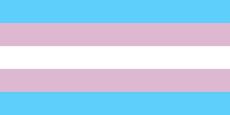 Bandeira da visibilidade trans