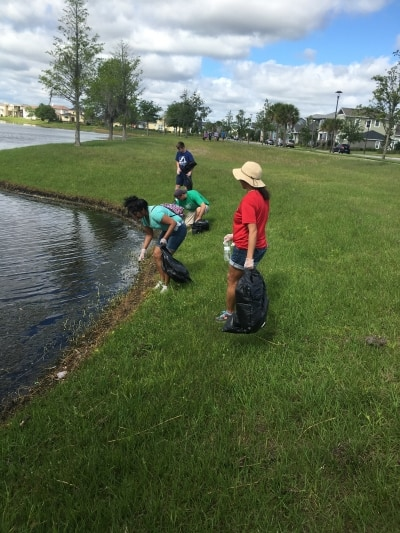 Clearing litter from the water's edge