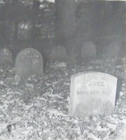 St Albans pets cemetery 1920-33
