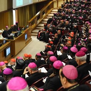 Sinodo dei vescovi