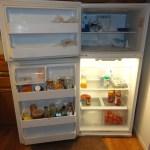 refrigerator a mess