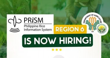 DA Prism hiring staff