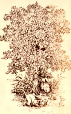 The Jam-Tree