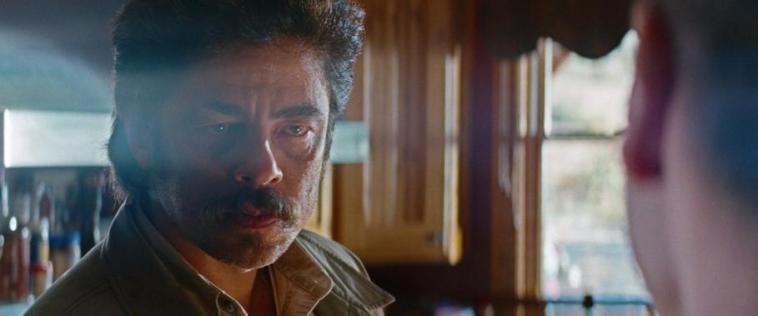 Le belve, scheda film, recensione, Oliver Stone, Salma Hayek, Benicio Del Toro, Blake Lively,