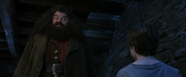 Harry Potter e la pietra filosofale frasi, citazioni e dialoghi di Chris Columbus con Daniel Radcliffe, Rupert Grint, Emma Watson, Hagrid