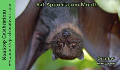 Celebrate Bat Appreciation Month in October