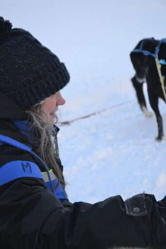 Non-stop Noor: The best things we did in Lapland - riding a husky sleigh in Norway