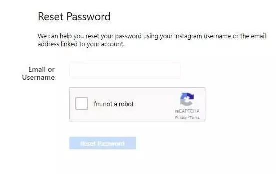 reset password ig