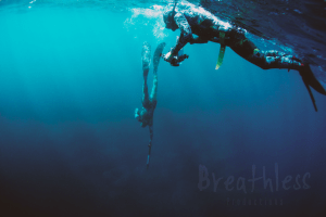 Spearfishing Teamwork makes sense. Tips to increase bottom time