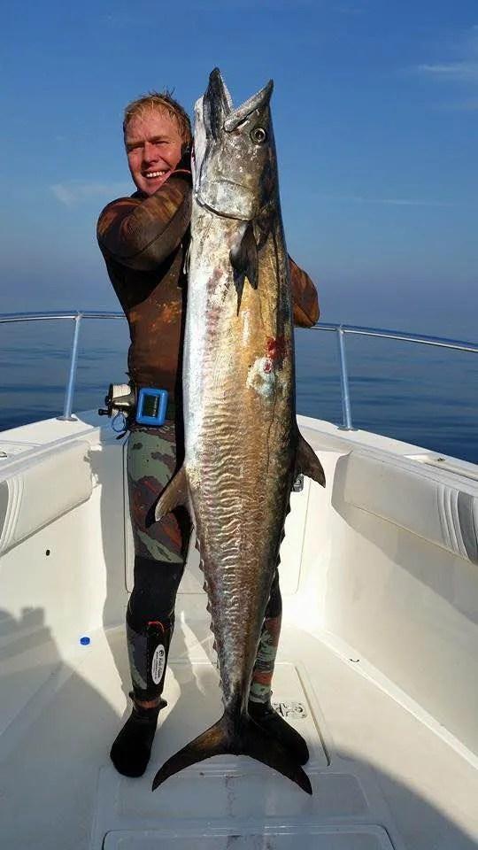 Chris Coates Narrow Barred Spanish Mackerel Spearfishing