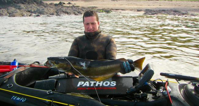 Grant Laidlaw with a Pollock caught spearfishing off a kayak in Scotland