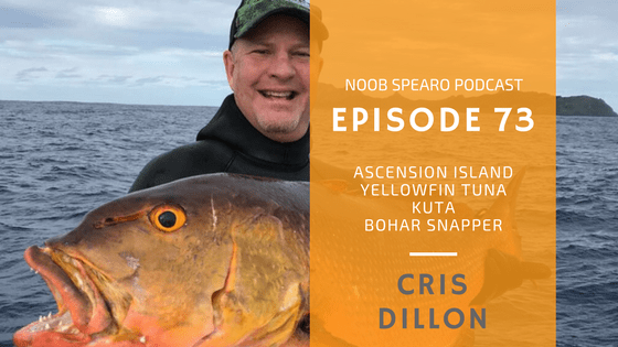 NSP:073 Cris Dillon spearfishing hunting techniques