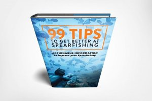 99 Tips to Get Better at Spearfishing Retail Outlets