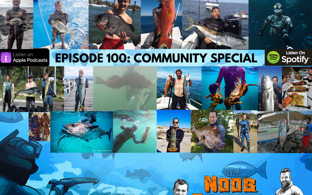 NSP:100 Community Special:)