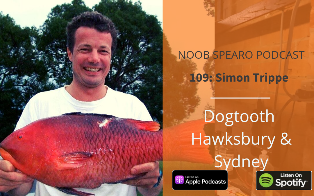 NSP:109 Simon Trippe on Dogtooth, Hawkesbury and Sydney