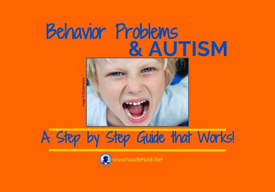 Addressing Behavior Problems Autism  NoodleNookNet