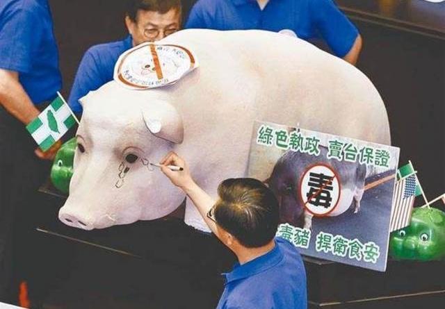 政府擬開放美豬進口,衝擊國內養豬產業及民眾食安。(本報系資料照)