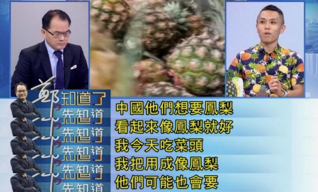 楊宇帆日前在政論節目中聲稱「台灣鳳梨要出口大陸超簡單,只要看起來像鳳梨就好,就算把菜頭用成像鳳梨外觀,他們可能也會要」,言論挨轟後他雖在臉書發文道歉,但影片已在陸瘋傳!(圖片翻攝FB/一級嘴砲技術士)