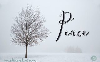 Peace—Embracing a Life of Hope, Wholeness and Harmony